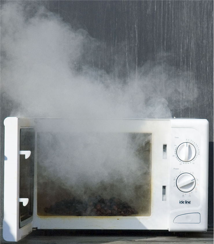 Picture Of Raisins In A Microwave Oven
